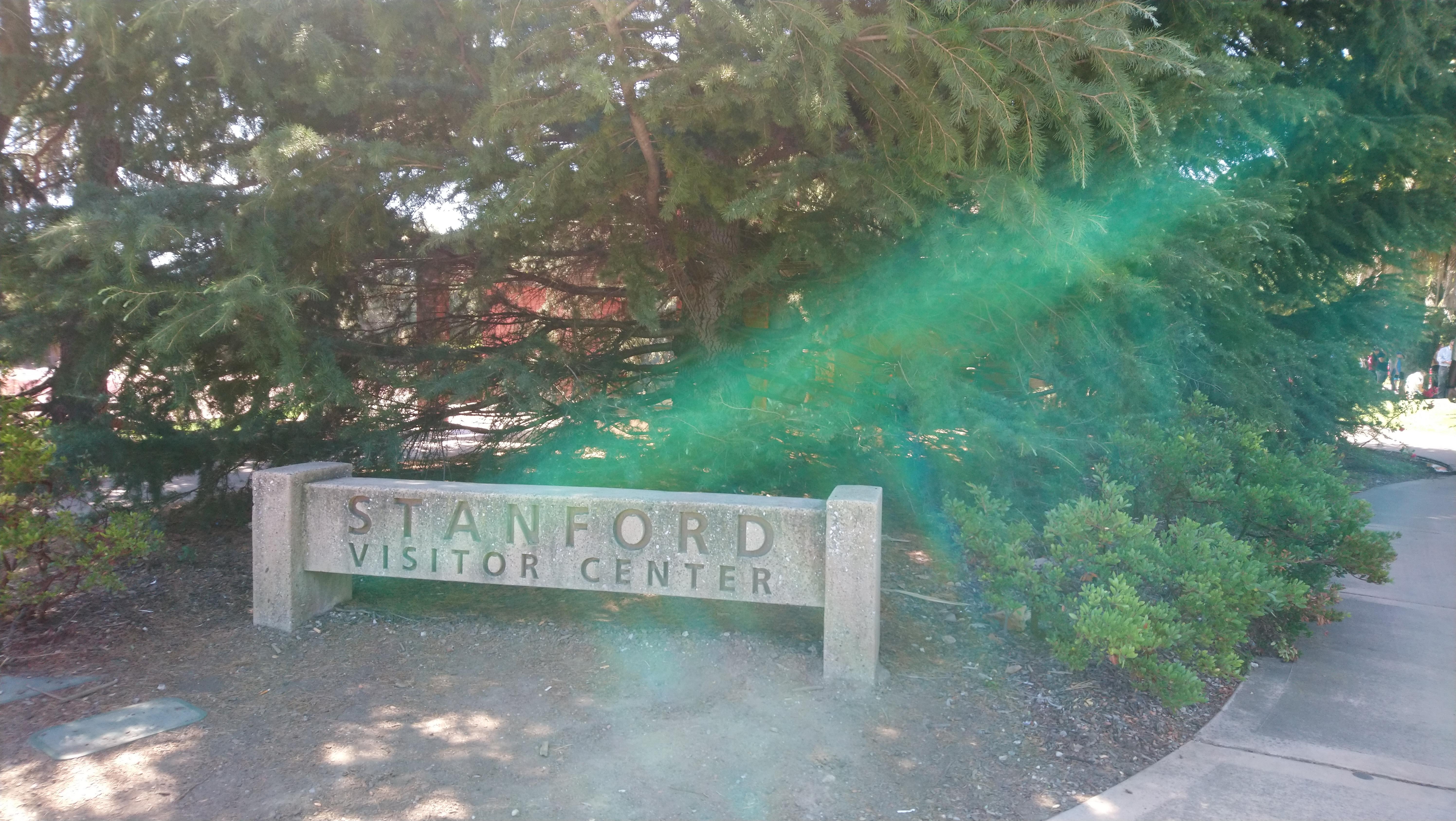スタンフォード大学見学!
